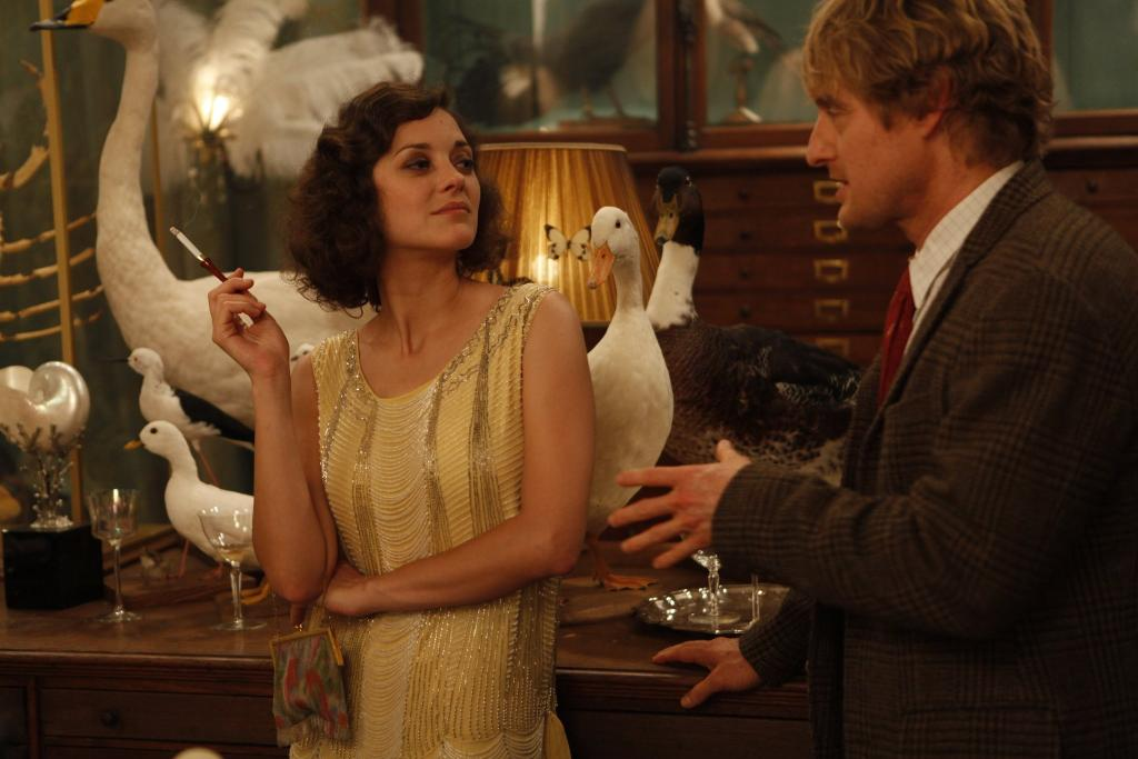 deyrolle midnight in paris