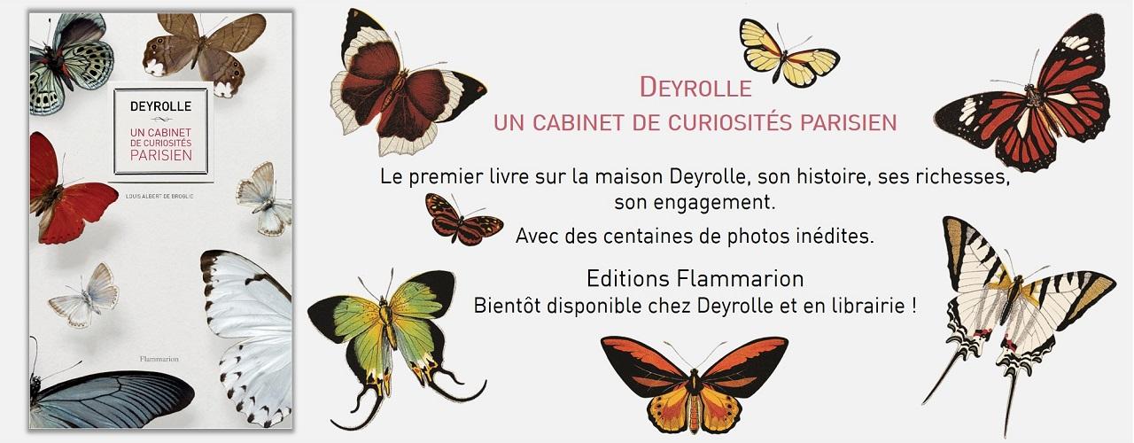 Exceptionnel Deyrolle - Taxidermie, entomologie, curiosités naturelles - Deyrolle KR21