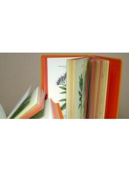 Atlas de poches des plantes des champs des pariries et des bois