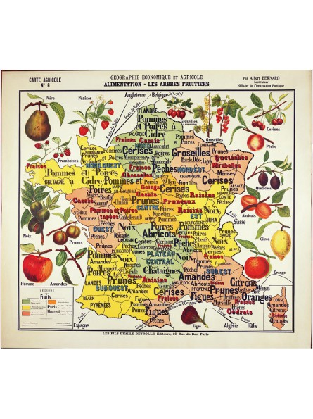 """Carte de Géographie """"Les Fruits"""""""