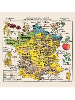 """Carte de géographie n°2 : """"Les boissons"""""""