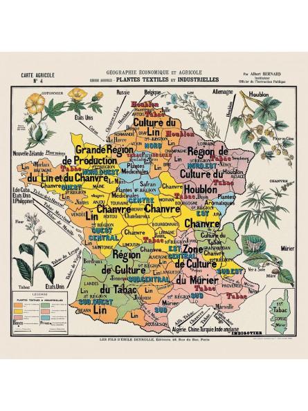 """Carte de géographie n°4 : """"Plantes textiles et industrielles"""""""