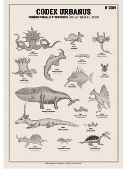 Affiche Codex/Deyrolle