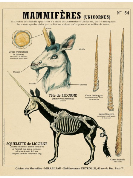 la Licorne, Créatures Fantastiques