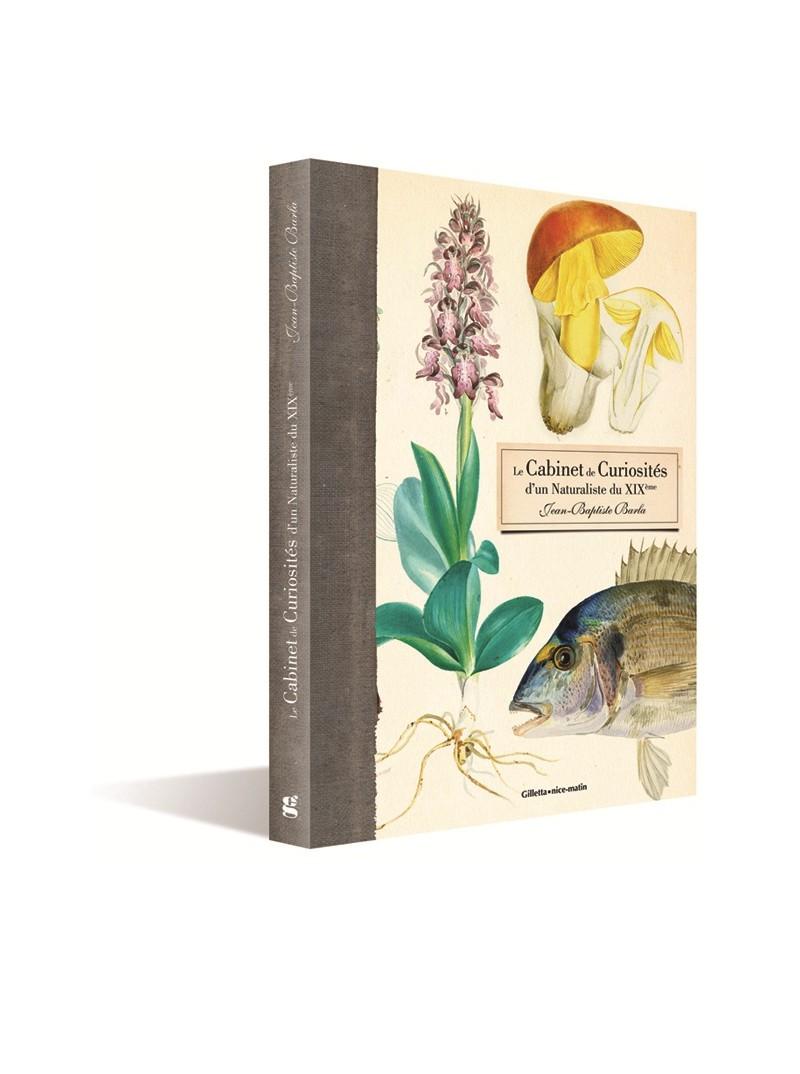 Le cabinet de curiosités d'un naturaliste du 19ème's