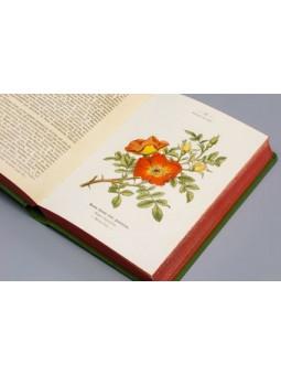 Atlas de poches des Arbustes et arbrisseaux