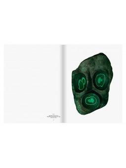 Roger Caillois: La lecture des pierres
